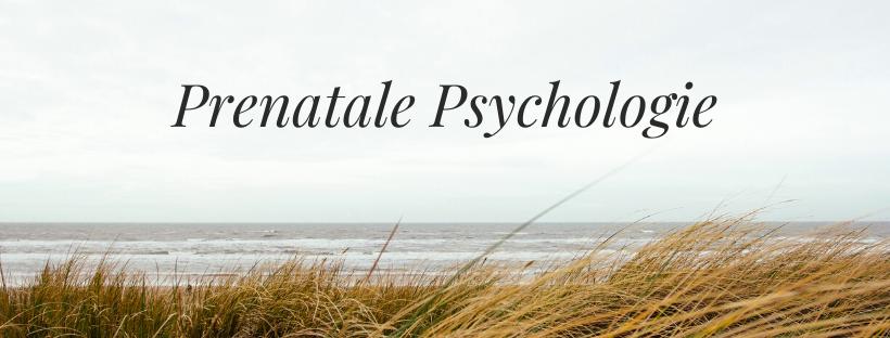 Prenatale psychologie