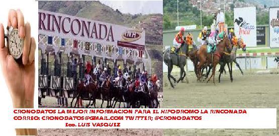 INFORMACION HIPICA (CRONO DATOS)