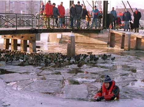 Elfstedentocht 1996