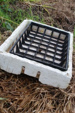 styrofoam box and tray
