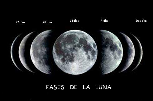 del campo influencia de la luna en los cultivos