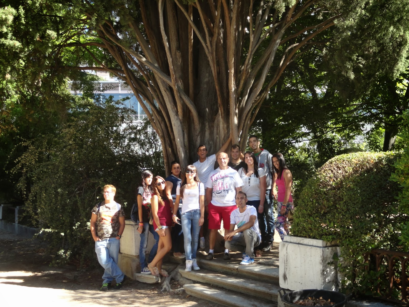 Escuela taller vicente paredes x jardin bot nico for Jardin botanico talleres