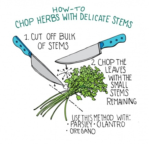 how to chop herbs with delicate stems