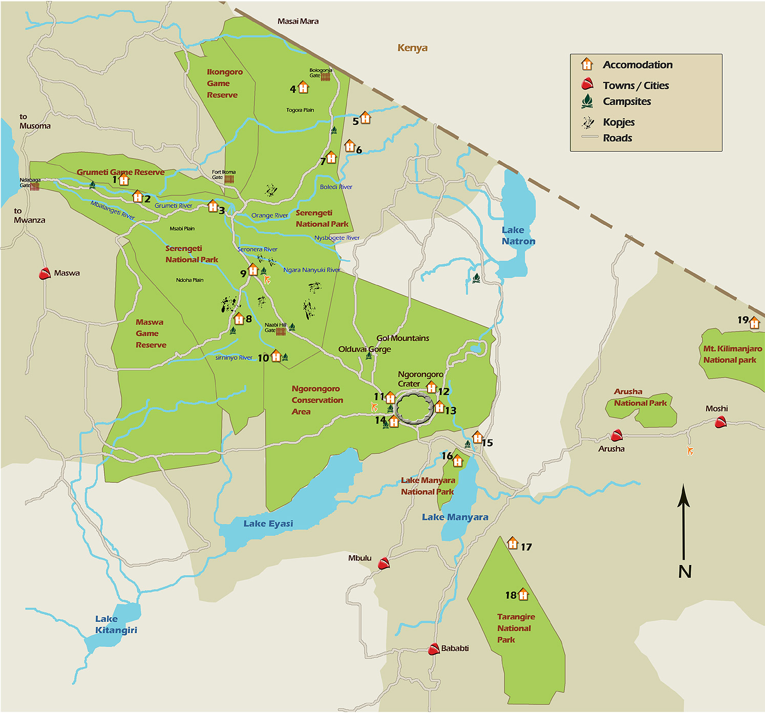 Tanzania Safari for Women Serengeti Wildlife Migration