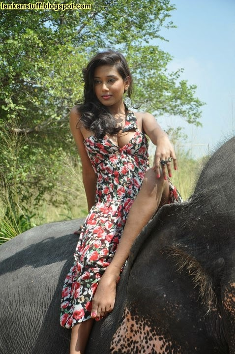 from Weston elephants with women fucking sri lanka