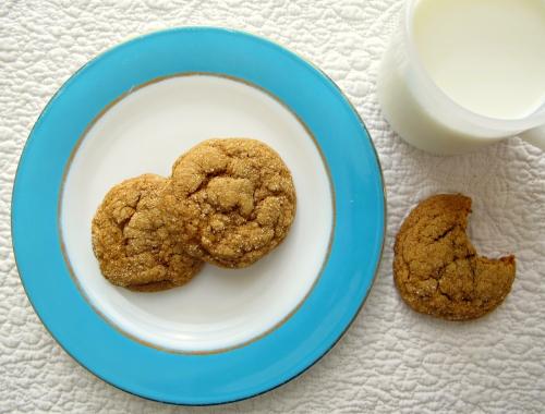 Cats and Casseroles: Pumpkin Gingersnap Cookies