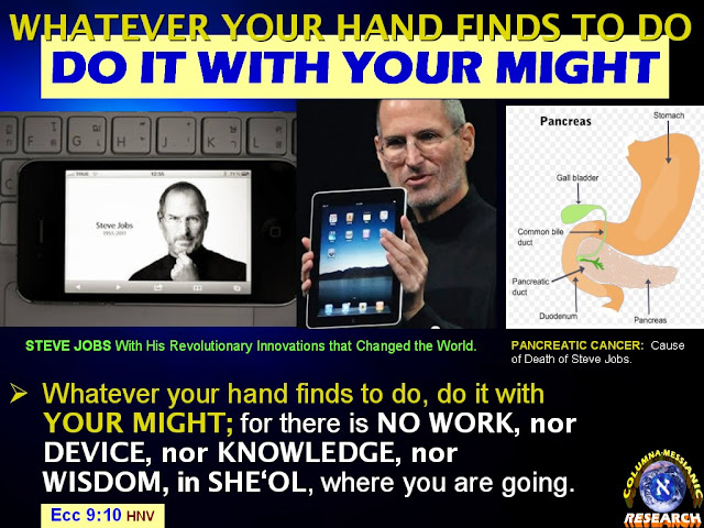steve jobs contribution and impact on technology in modern society Former apple ceo steve jobs passed away wednesday at the age of 56, but   just how notable jobs' contribution to technology products are to today's society   what steve jobs product has had the biggest impact on you.