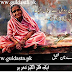 Most Heart Touching Article On Mothers in Urdu