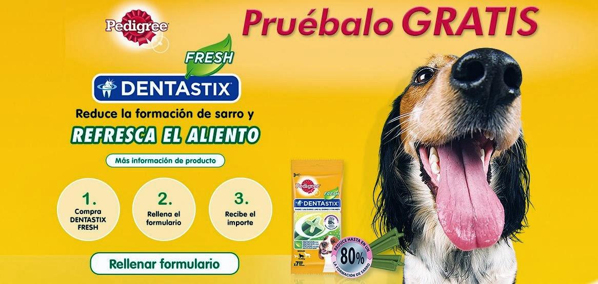 Prueba Gratis Pedigree Dentastix Fresh