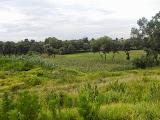Cholula Landscape