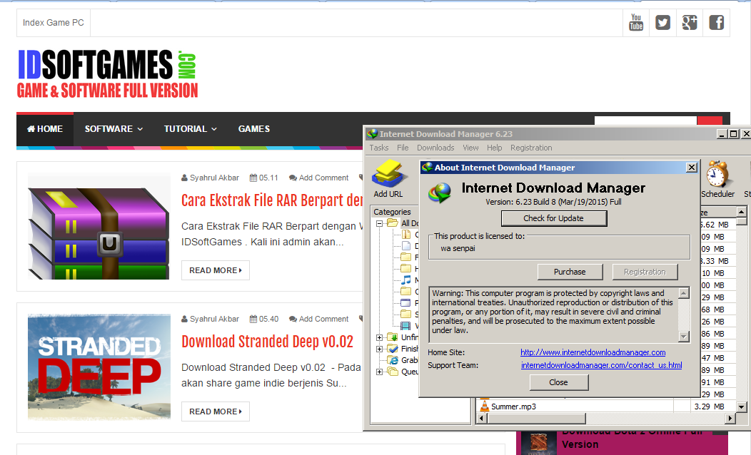 Screenshot IDM