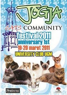 jogja cat's festival 2011, kontes kucing, lomba kucing, festival kucing