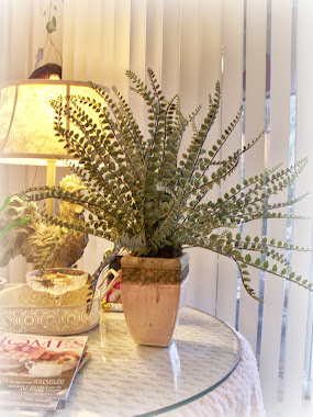 Rustic & Elegant fern for the family room...