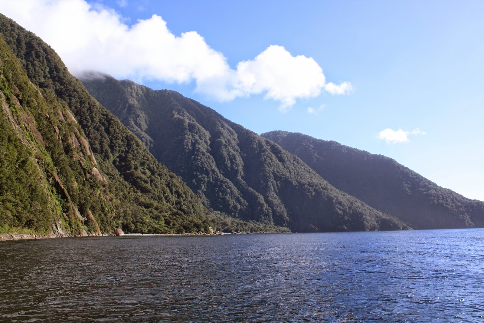 Pretty hills, Milford Sound.