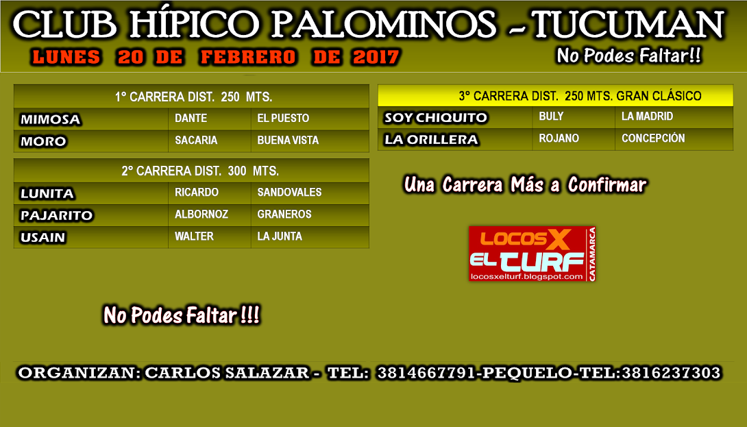 20-02-17-HIP. PALOMINOS-PROG.