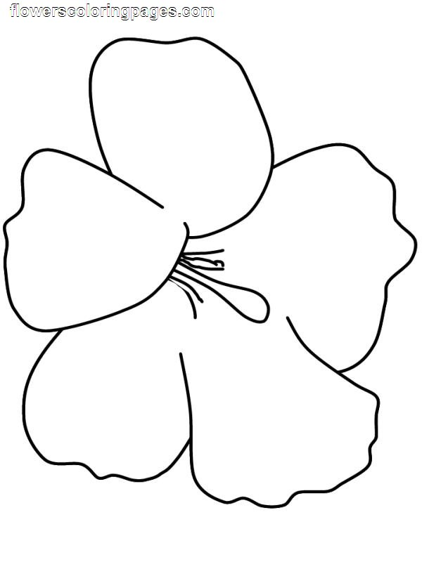 Preschool Flower Coloring Pages title=