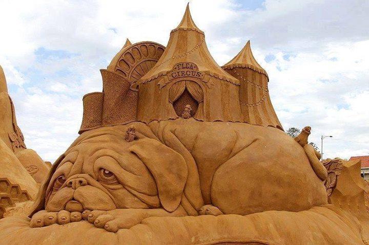 Menara-Pasir-Sirkus-Anjing