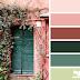 Marie + Combo de color
