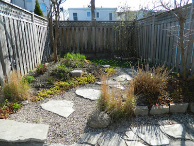 Coxwell Danforth backyard renovation before Paul Jung Gardening Services Toronto
