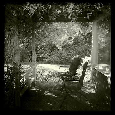 karri allrich photograph