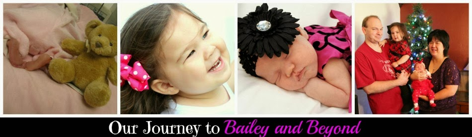 Our Journey to Bailey & Beyond