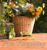 Korgodling. Hur/Vad/Varför odla i korg
