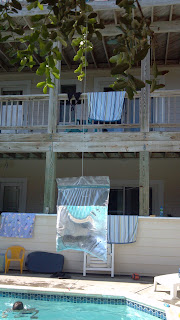hanging bag of water with a penny it to deter flies