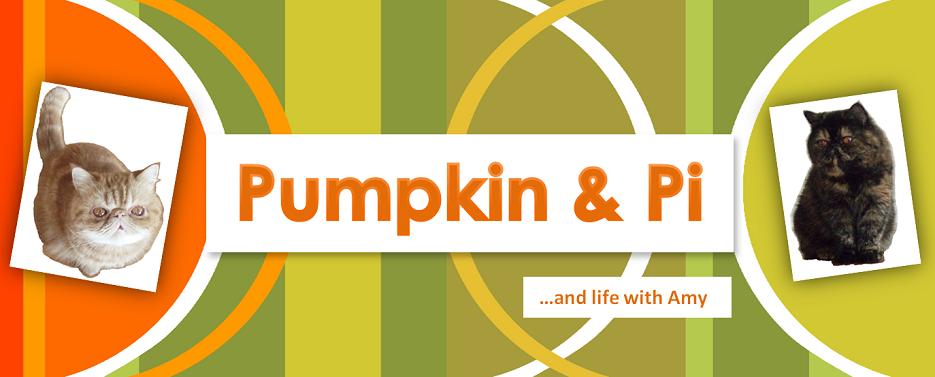 Pumpkin & Pi