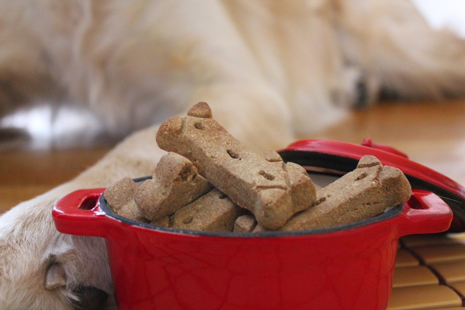 Solid Gold Cinna-Bone dog biscuits