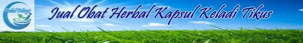 TOKO HERBAL DI SURABAYA | JUAL OBAT HERBAL SIDOARJO | GROSIR HERBAL GRESIK | SUPPLIER | DISTRIBUTOR