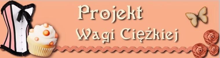 http://projektwagiciezkiej.blogspot.be/2014/06/pink-bling-anniko.html