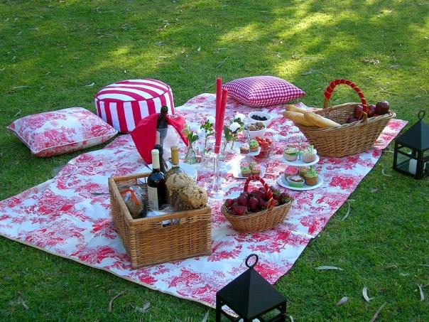 Alba hogar diy nos vamos de picnic - Comida para llevar de picnic ...