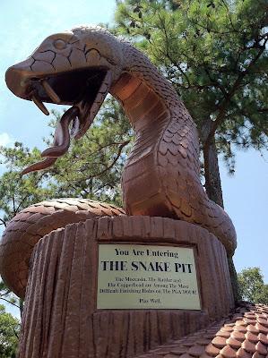 Snake Pit Innisbrook Copperhead