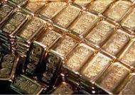 """Articolo """"La corsa all'oro"""""""