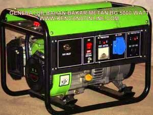 Genset Biogas BG 5000 W