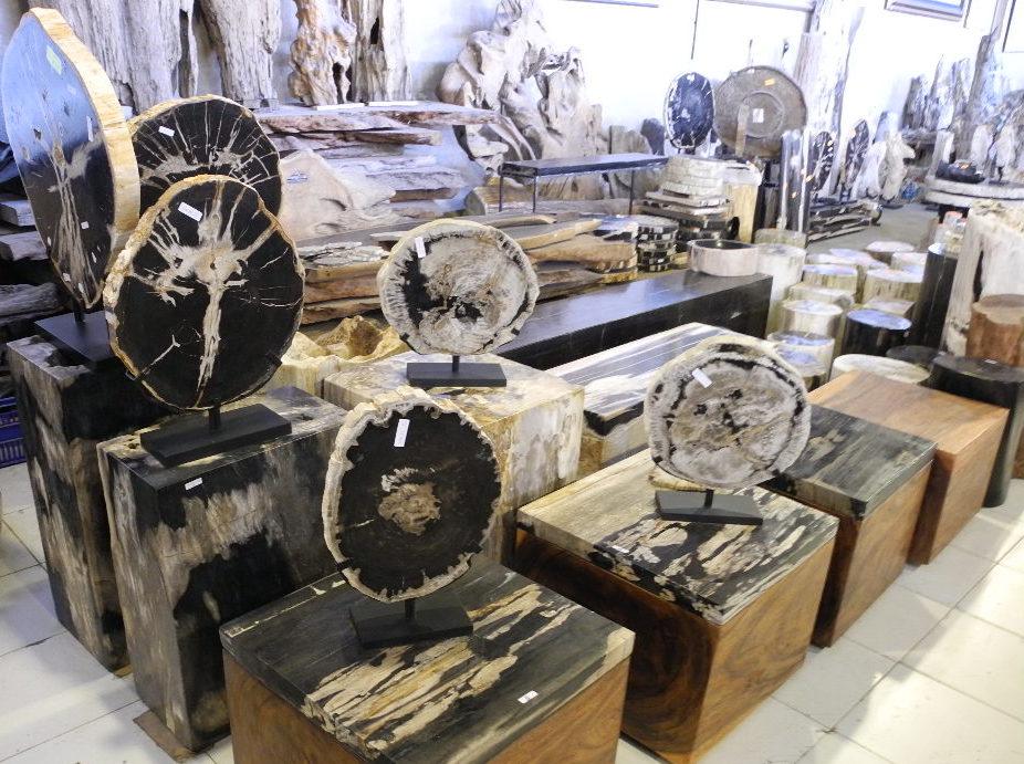 petrified wood for sale | versteinertes holz zu verkaufen,