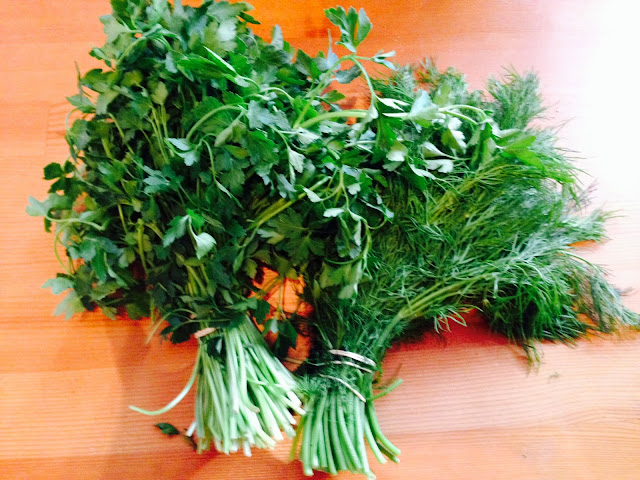 Bunch of parsley and dill