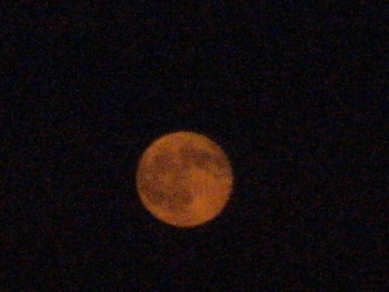 Charmant Mond Färbung Seite Zeitgenössisch - Beispielzusammenfassung ...