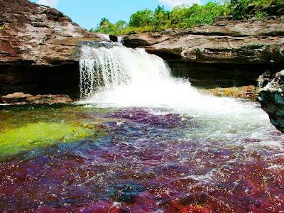 color water crystal river 09 Sungai Kristal   Sungai tercantik di Dunia (16 Gambar)