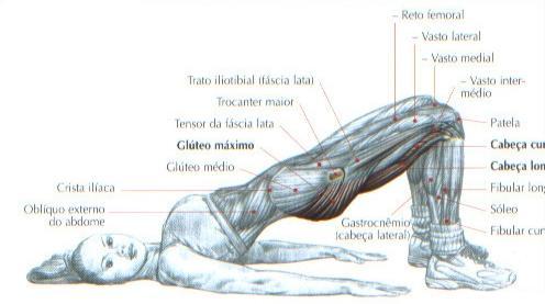 Bra O Forte Muscula O Dicas De Treino