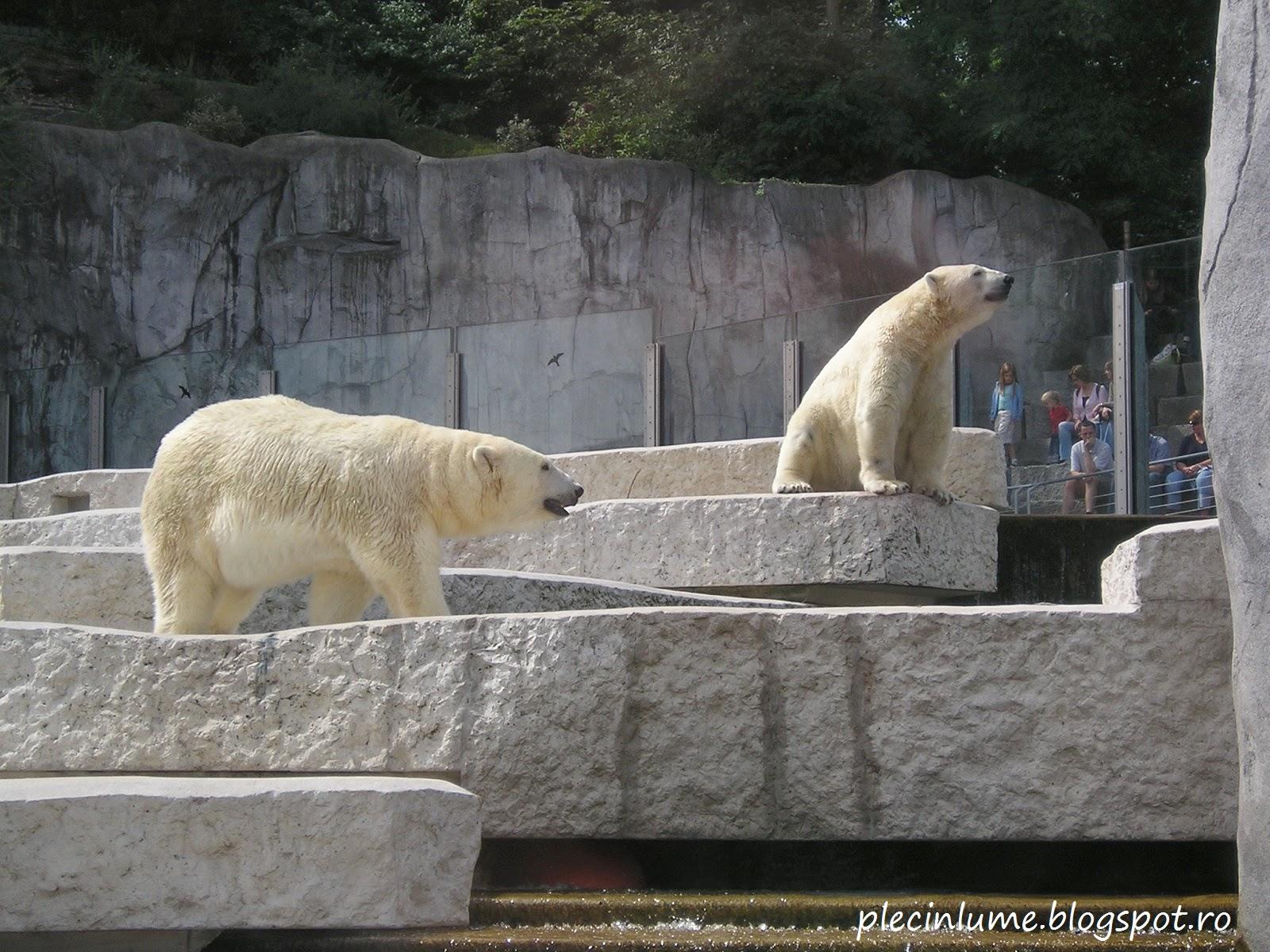 Gradina zoologica din Karlsruhe