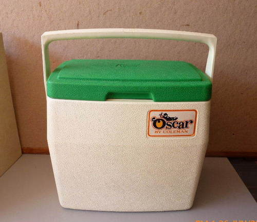 Big coolers sell in the forty dollar range. (If your kid doesnu0027t lose it) & Money in the Garage: Coleman isnu0027t just for camping Aboutintivar.Com