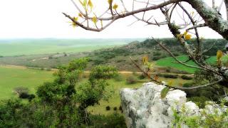 A Estrada Vista do Alto do Cerro do Tigre