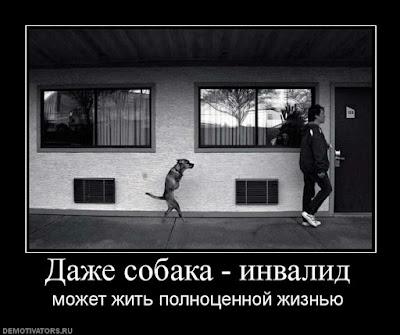 Взято с demotivators.ru