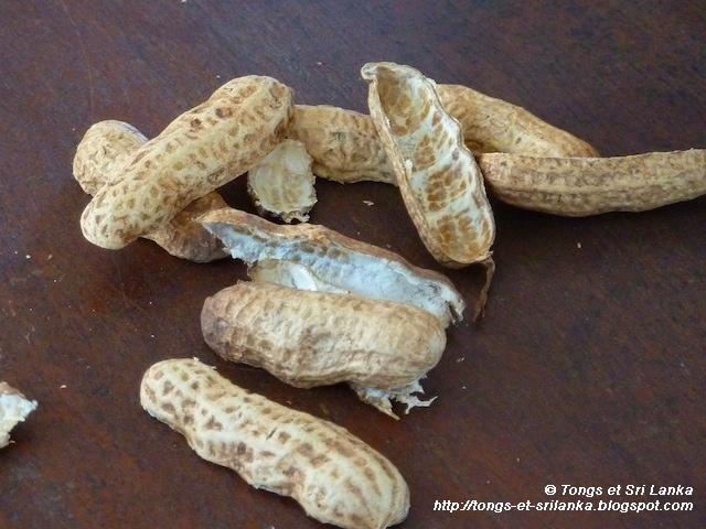 cacahuetes au Sri lanka