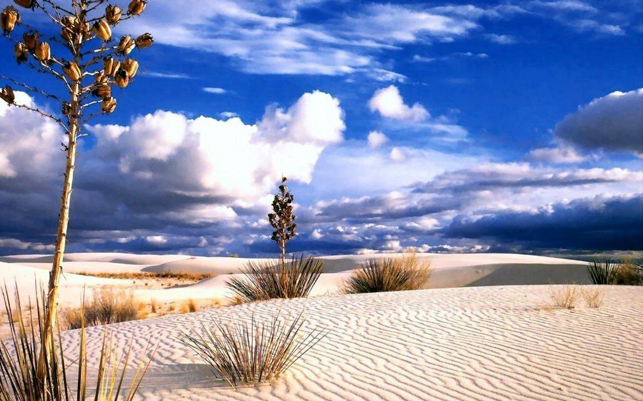 http://4.bp.blogspot.com/-FMrUO55QY3g/TViA-81CQ1I/AAAAAAAAAMI/CX_-SVzsPfs/s1600/desert_9.jpg