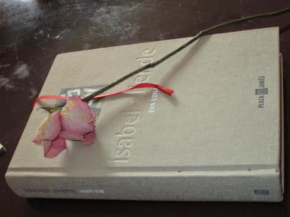 Imagenes De Las Mejores Rosas - Imagenes de rosas con frases de amor