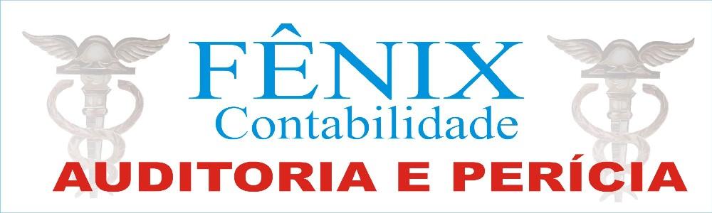 FENIX CONTABILIDADE E AUDITORIA