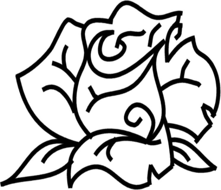 http://4.bp.blogspot.com/-FNF3UTBfBjA/U-ReFWoJ5xI/AAAAAAAAKpA/WHgtZNKG6uc/s1600/rose.jpg