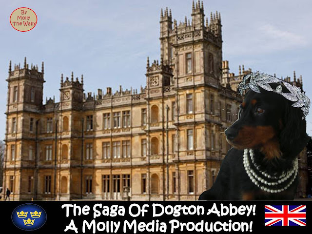 DOWNTON ABBEY? MOLLY THE WALLY DOES DOGTON ABBEY.Ep 8 pic 1